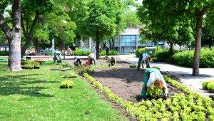 Zöldövezeti pályázatot hirdet a MOL