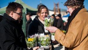 Nőnapi Kankalinok a piacon
